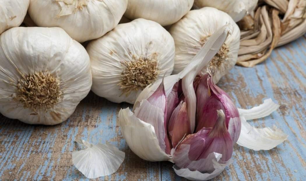Oleificio Cima di Bitonto - Oli Aromatizzati